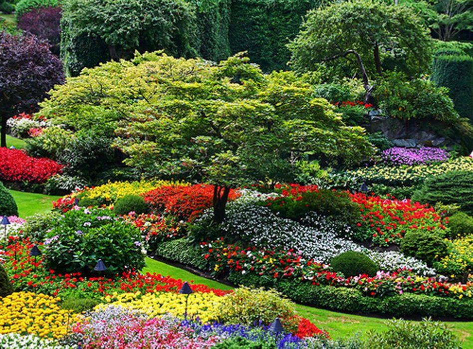 garden park landscape (14) wallpaper