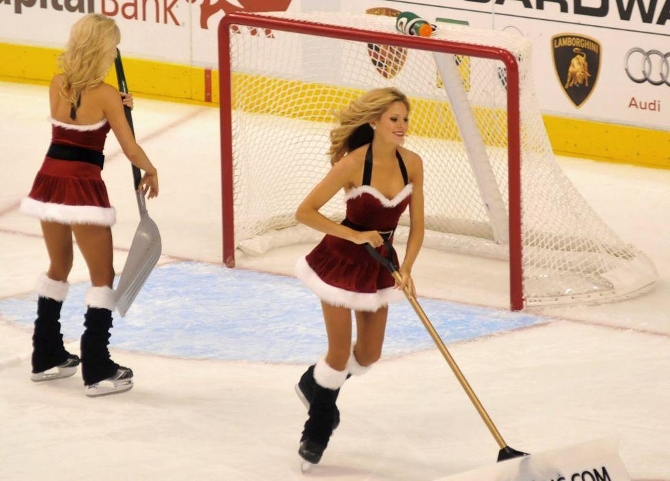 DALLAS STARS nhl hockey texas (57)_JPG wallpaper