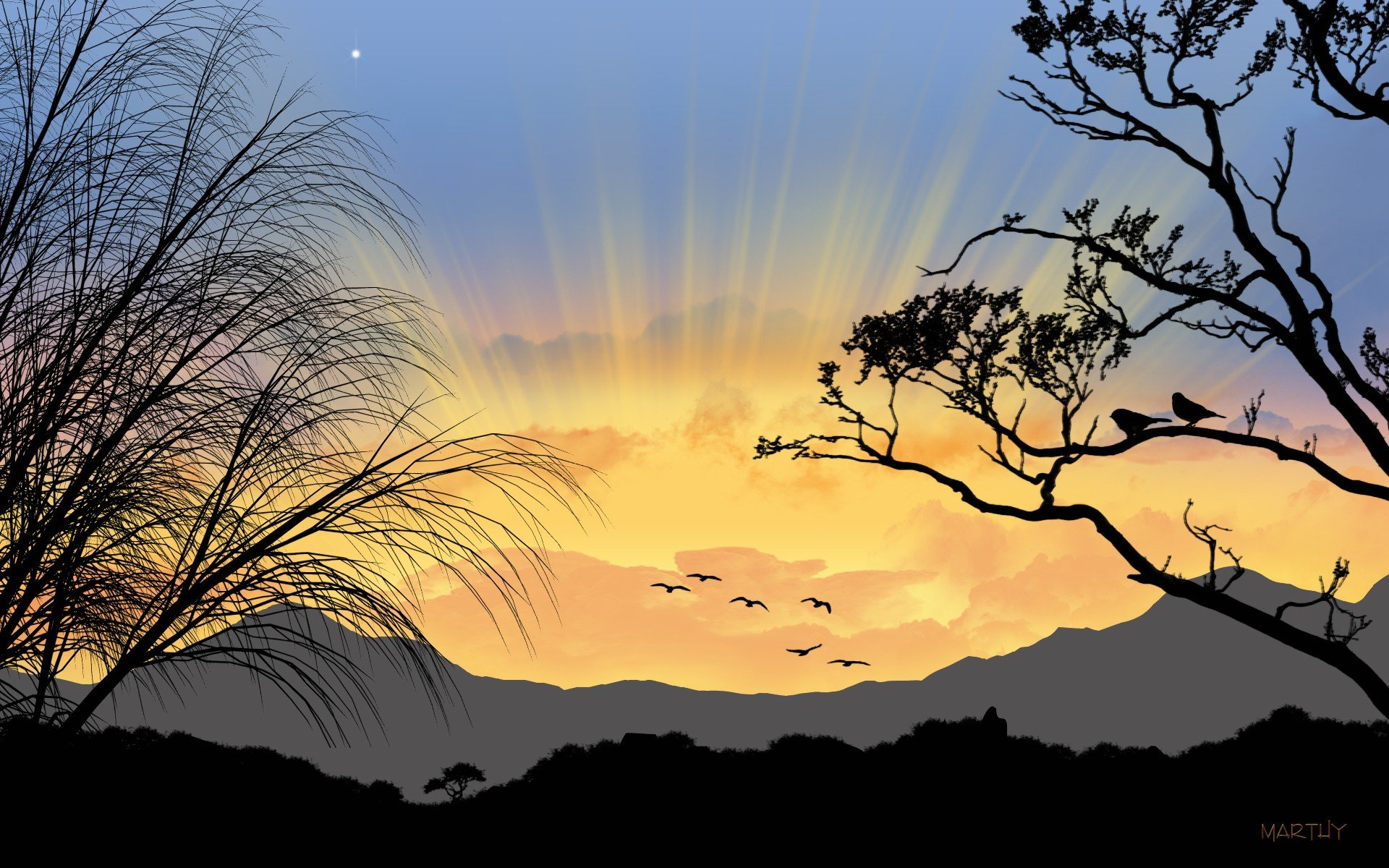 Sunrise trees silhouettes wallpaper | 1920x1200 | 323544 | WallpaperUP
