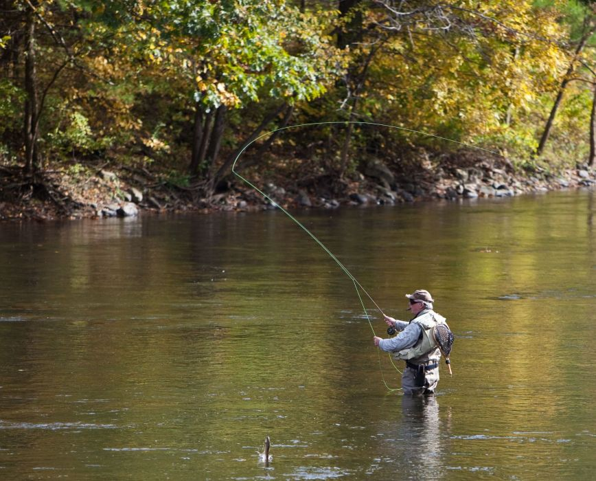 FISHING fish sport water fishes river autumn wallpaper