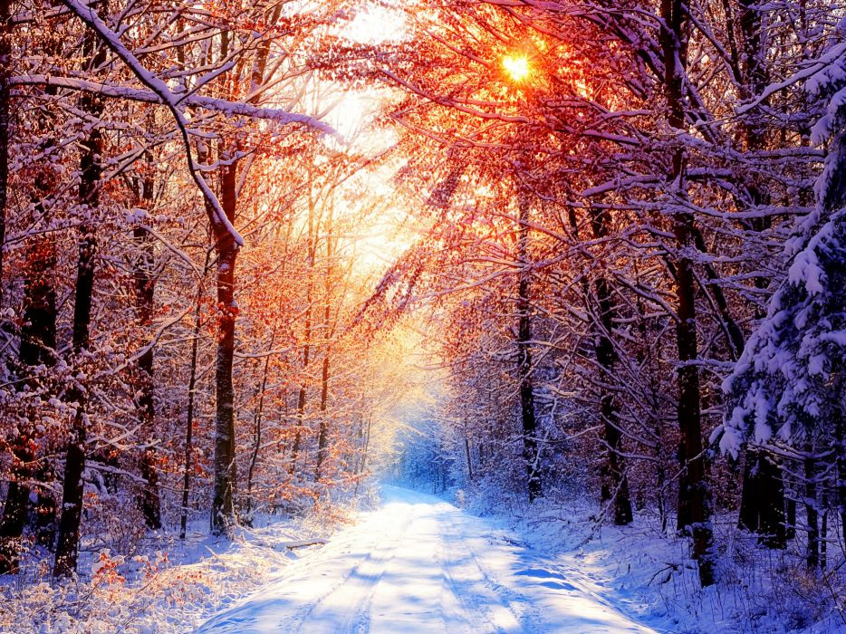 sunset winter forests wallpaper