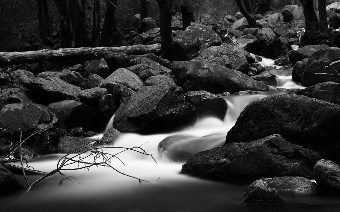 forests grayscale monochrome rivers wallpaper