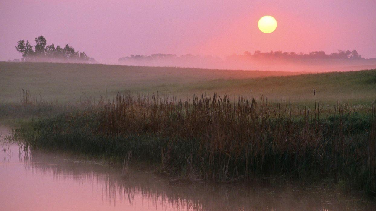 sunrise fog wallpaper
