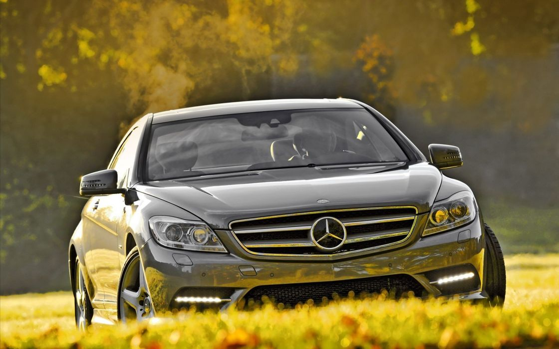 nature trees cars grass silver Mercedes-Benz wallpaper