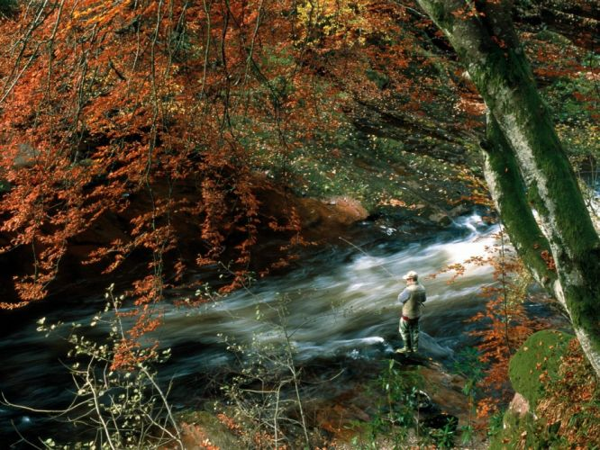 rivers wallpaper