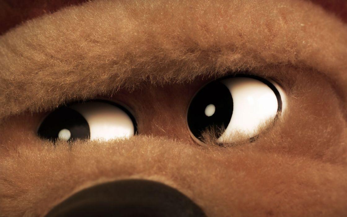 stare stuffed animals bears wallpaper