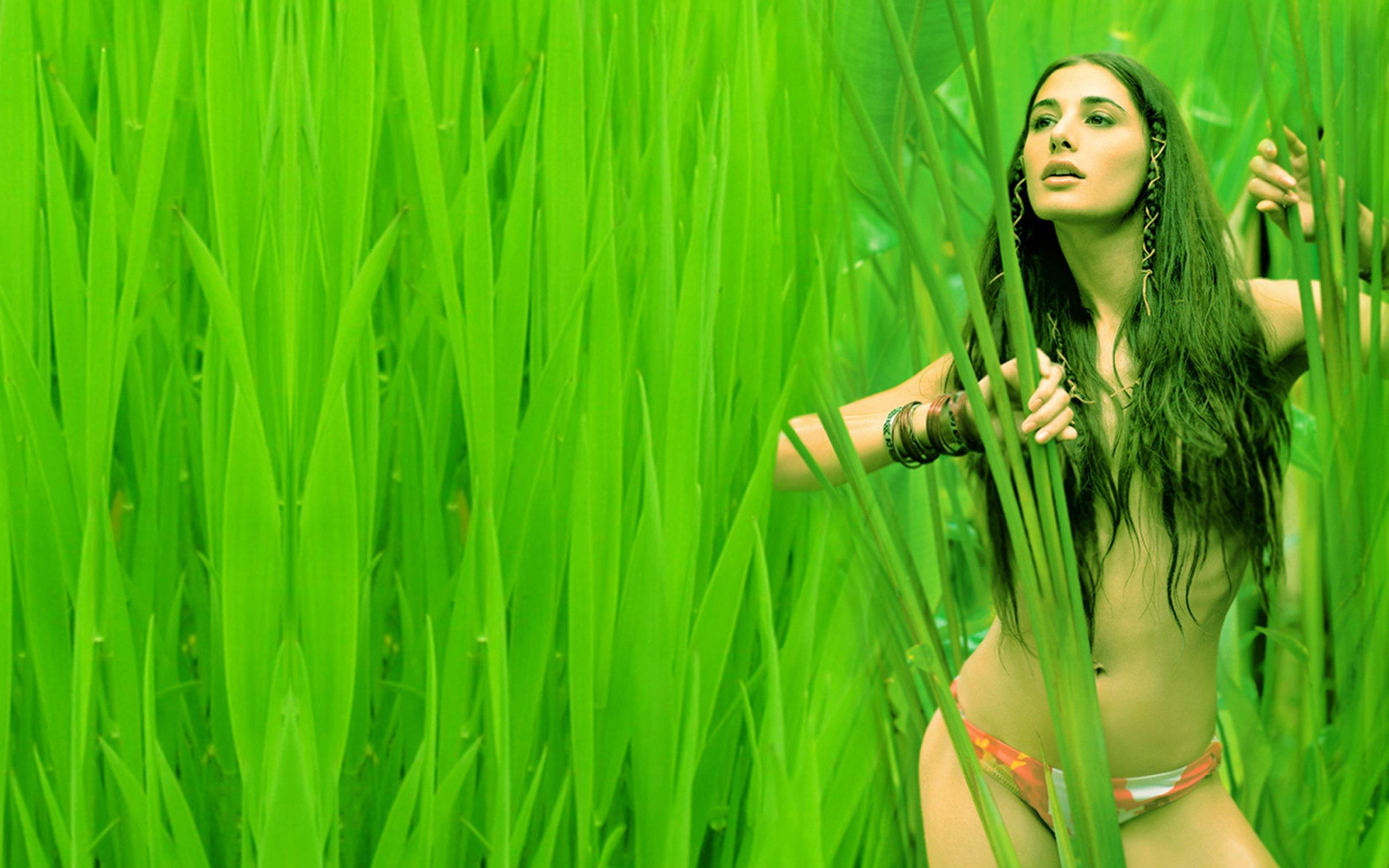 nargis fakhri actress bollywood model babe sexy bikini