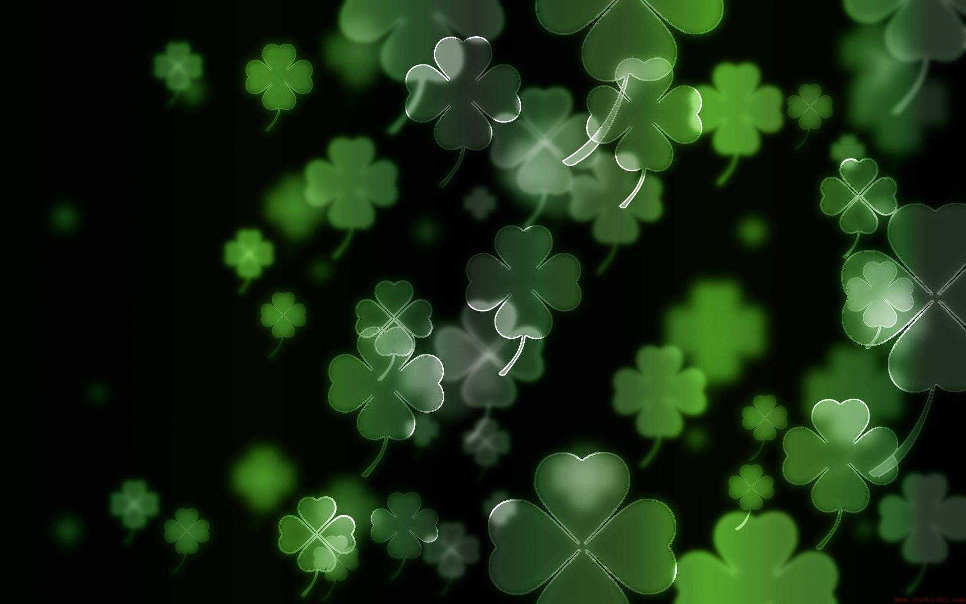 clover wallpaper for - photo #12