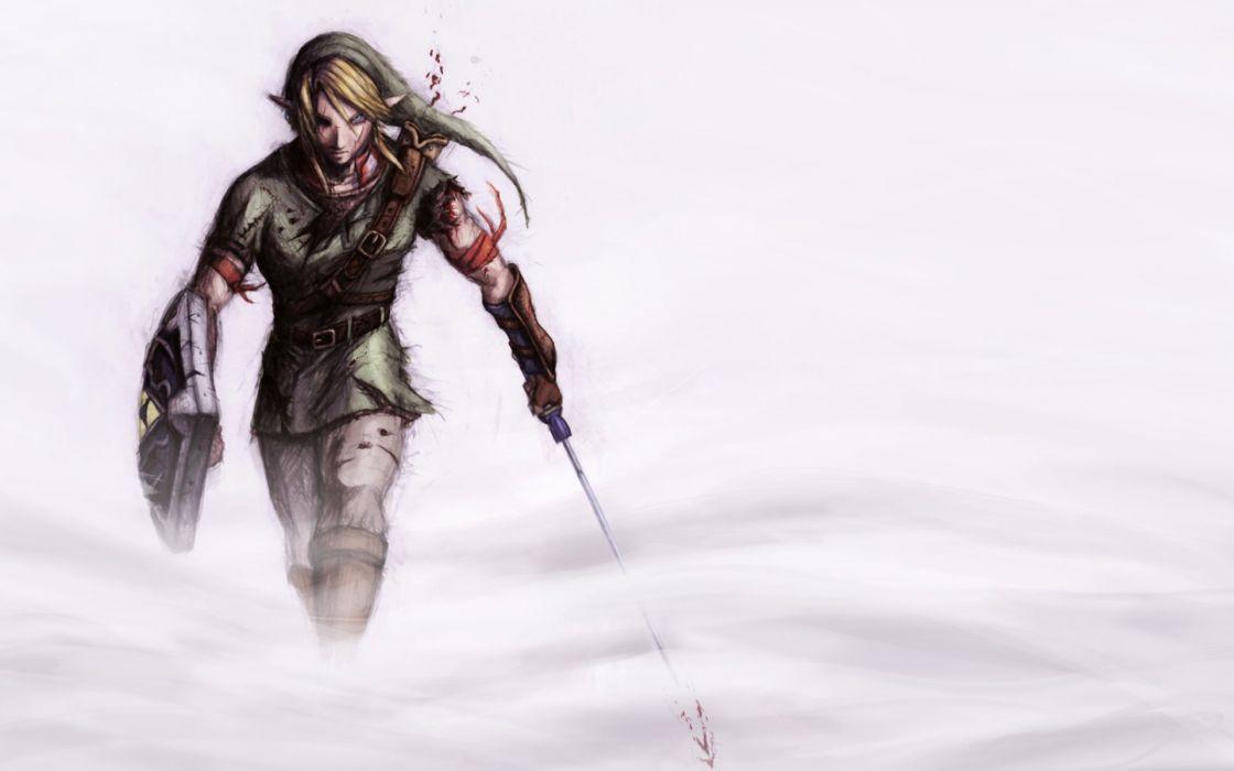 Link The Legend of Zelda wallpaper