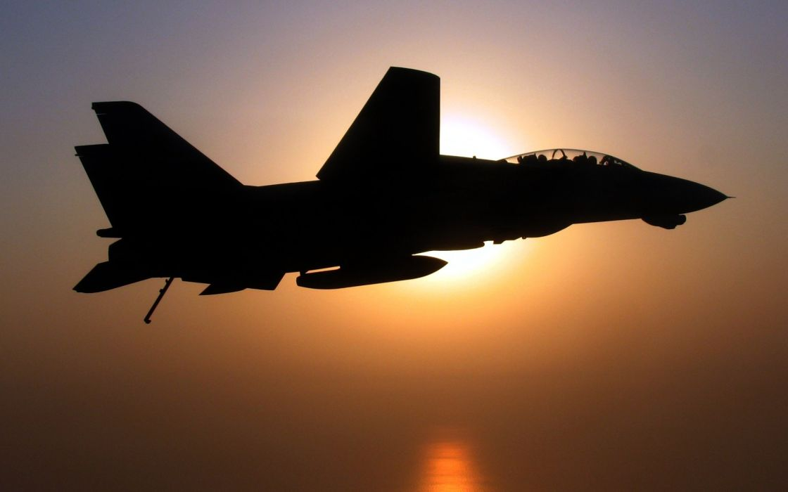 aircraft military silhouettes navy F-14 Tomcat wallpaper