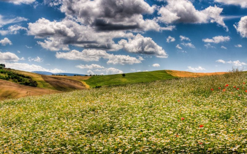 clouds landscapes nature fields skyscapes wallpaper