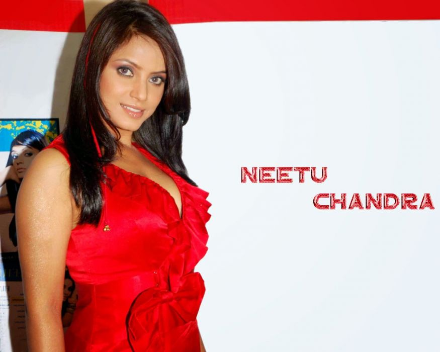 NEETU CHANDRA indian actress model martial arts model bollywood babe (23) wallpaper