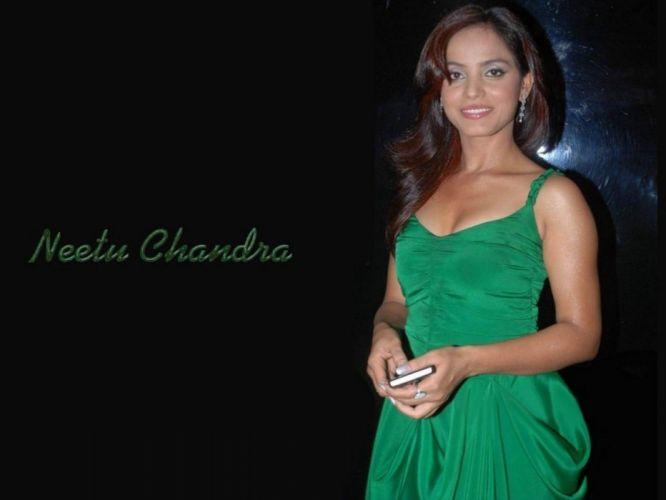 NEETU CHANDRA indian actress model martial arts model bollywood babe (53) wallpaper