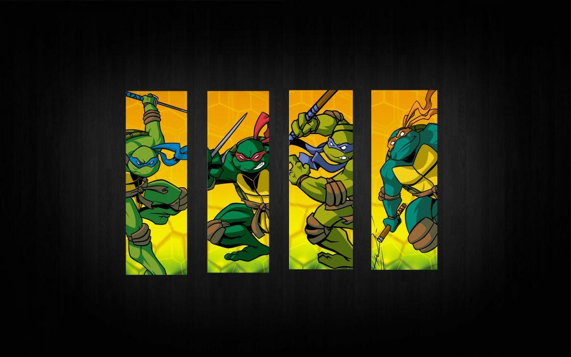 Teenage Mutant Ninja Turtles panels wallpaper