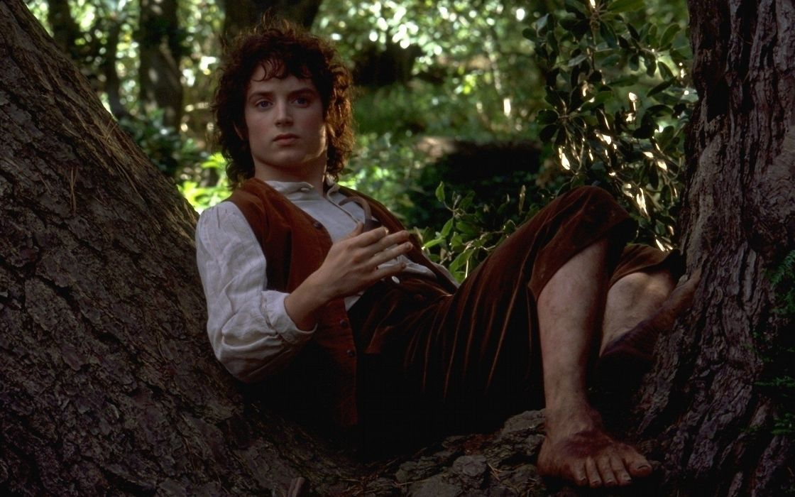 movies The Lord of the Rings Middle-earth Elijah Wood The Fellowship of the Ring Frodo Baggins Hobbits wallpaper