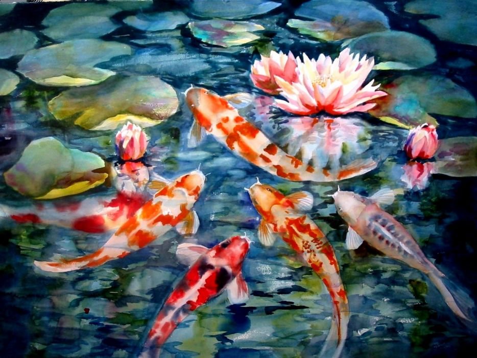 paintings fish koi artwork lily pads water lilies wallpaper