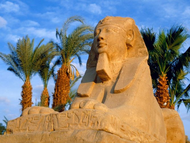 clouds Egypt Egyptian palm trees sphinx avenue Luxor Avenue of Sphinxes wallpaper
