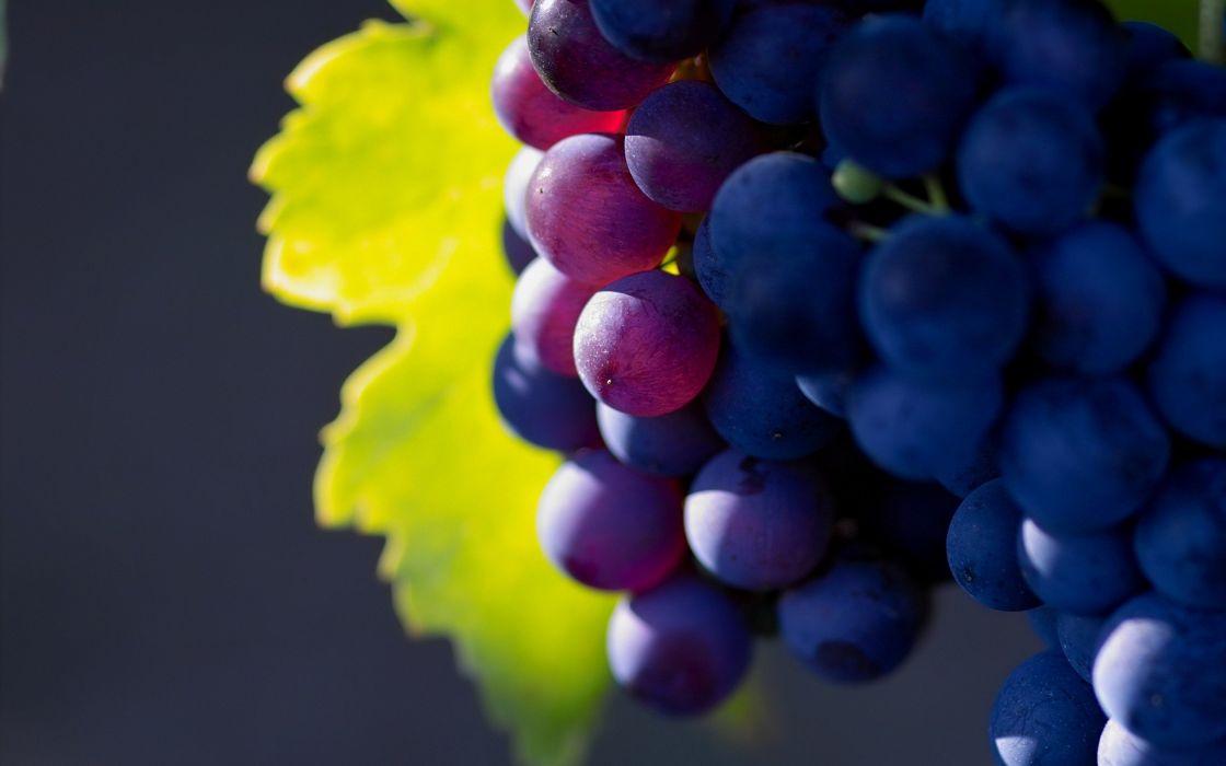fruits grapes wallpaper