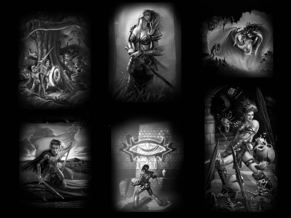neverwinter nights game warrior fantasy collage wallpaper