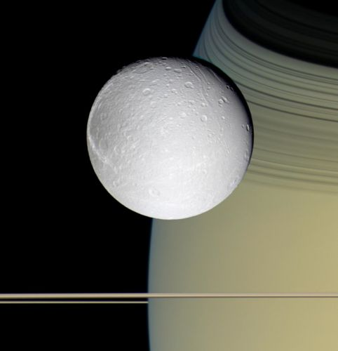 Ringside with Dione 1927x2000 wallpaper