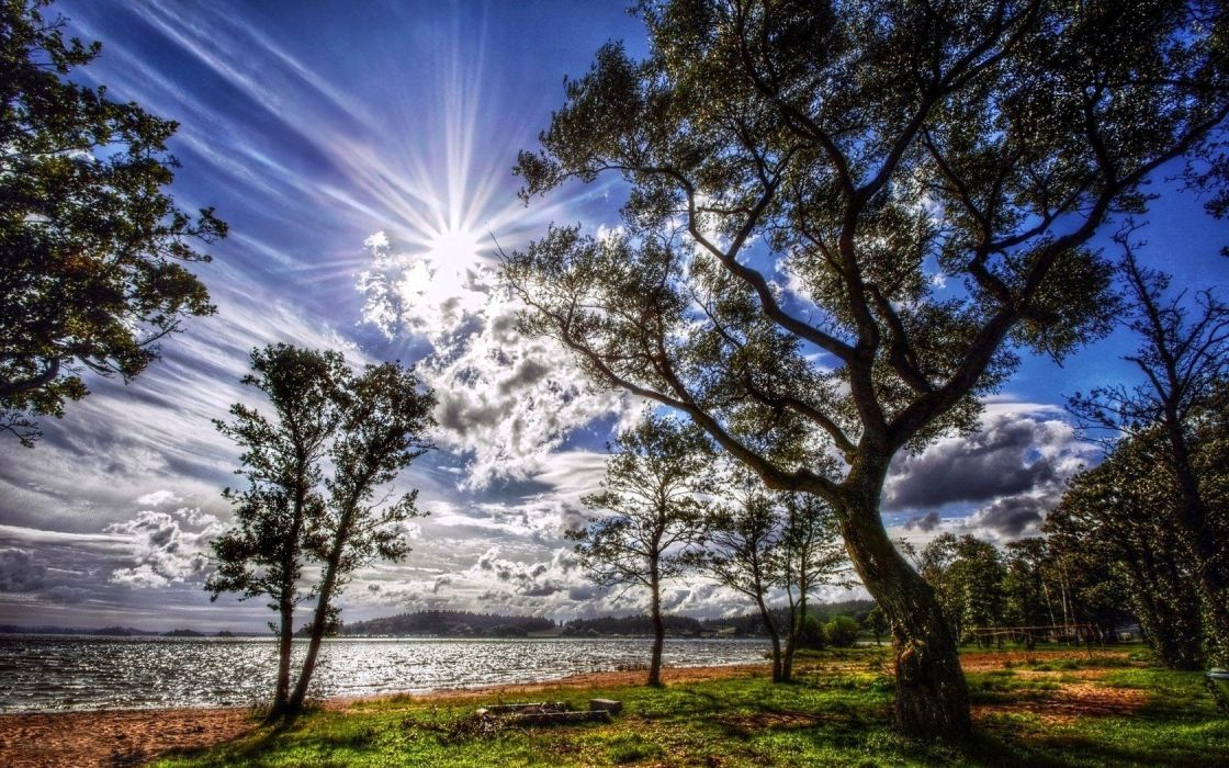 Light Serenity Landscapes Nature Coast Sun Trees Wallpaper