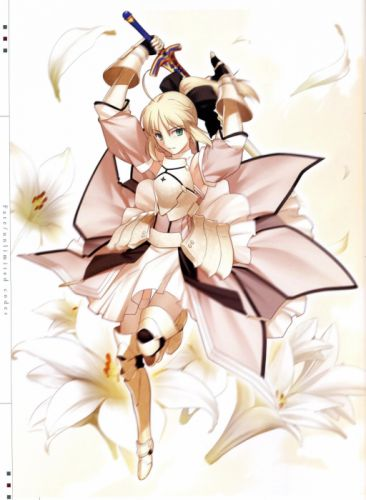 Fate Unlimited Codes concept art artwork characters anime Saber Lily detached sleeves Fate series wallpaper