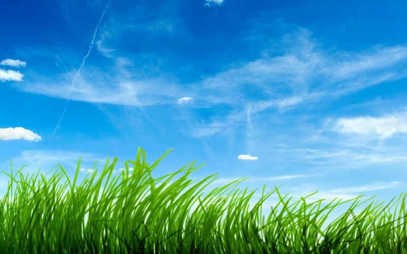 clouds grass skyscapes wallpaper
