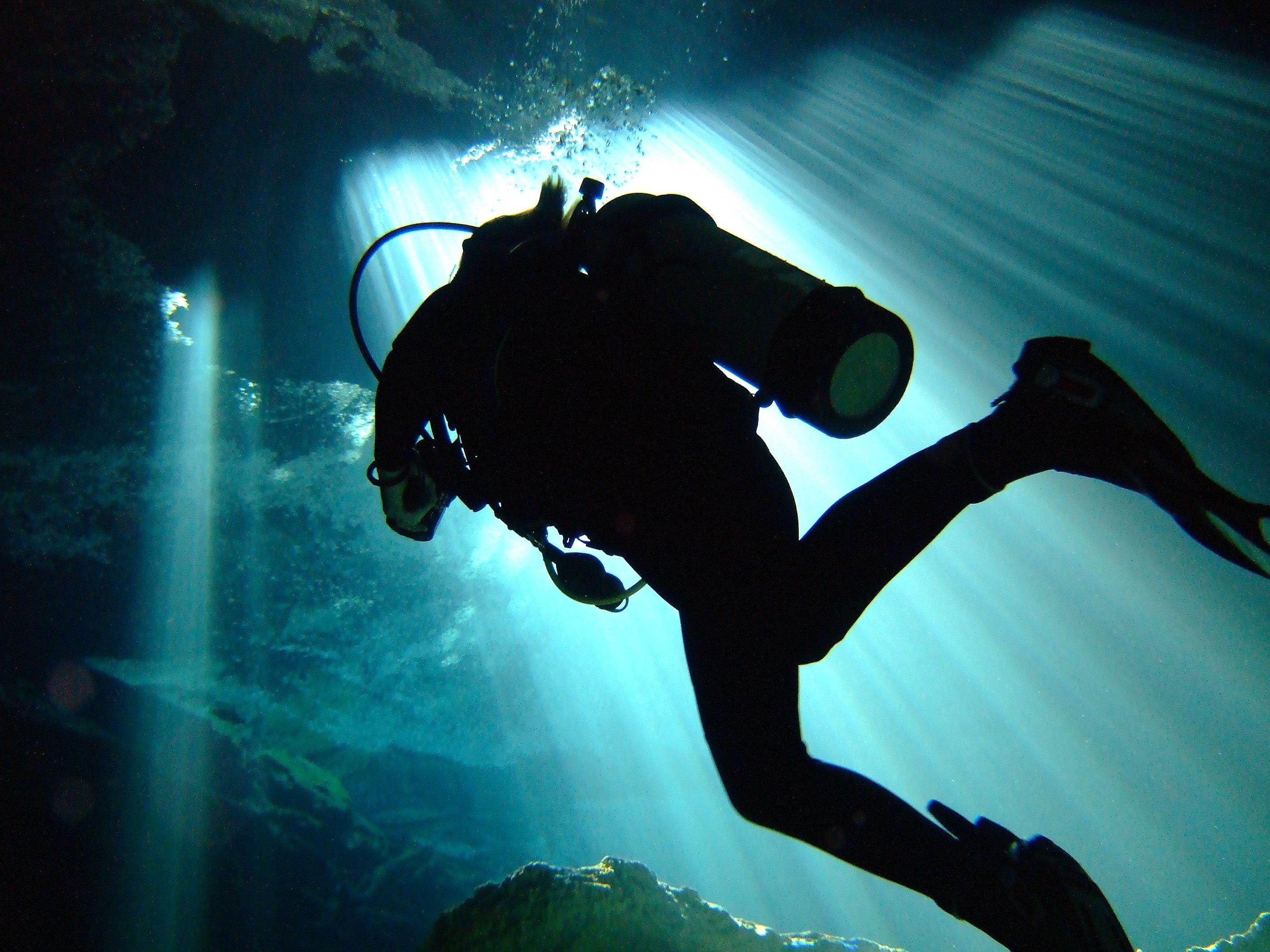 scuba diving wallpaper wallpapers - photo #25
