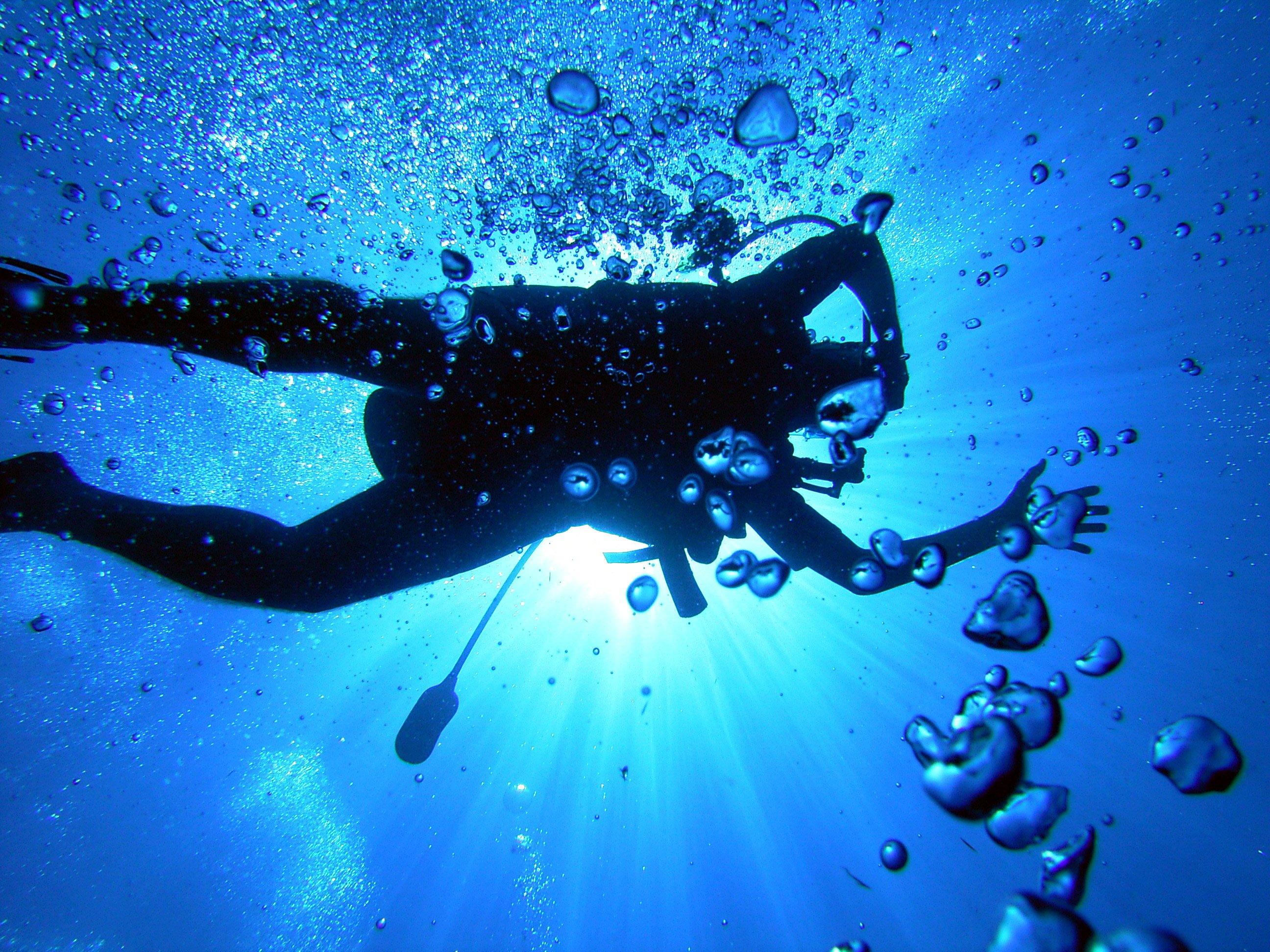 scuba diving wallpaper wallpapers - photo #43
