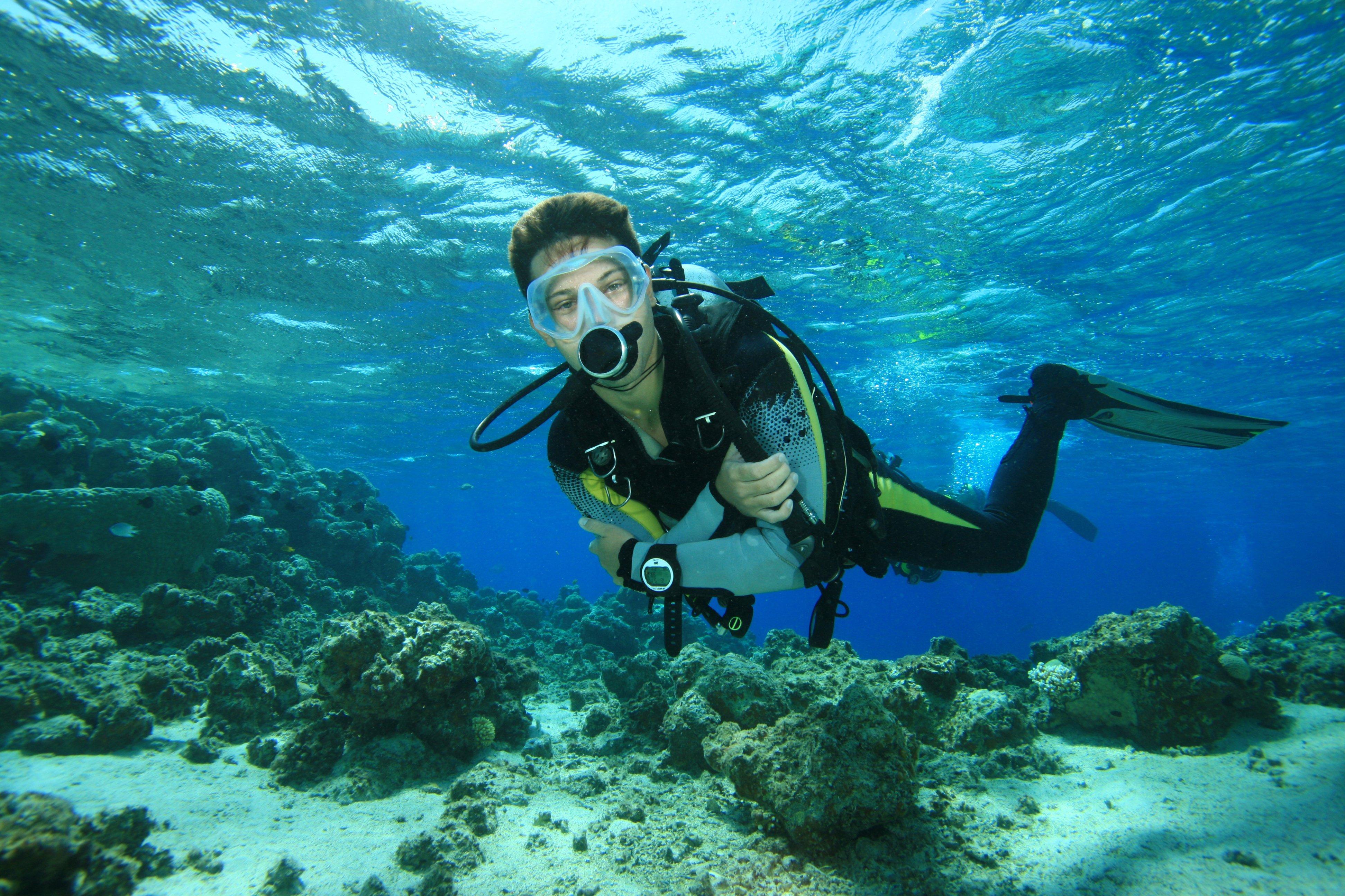 scuba diving wallpaper wallpapers - photo #39