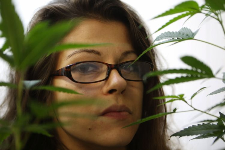 Marijuana 420 weed mary jane drugs (5) wallpaper