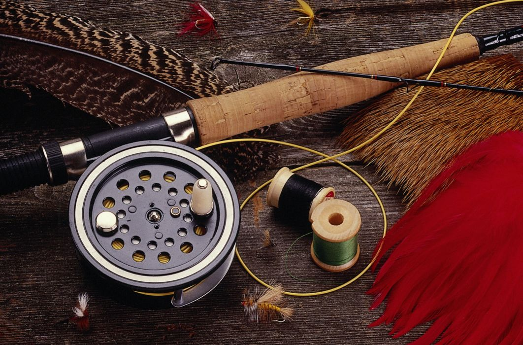 FISHING fish sport water fishes (88) wallpaper