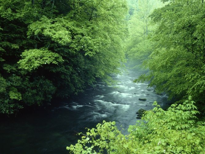 landscapes nature Tennessee rivers National Park Great Smoky Mountains wallpaper