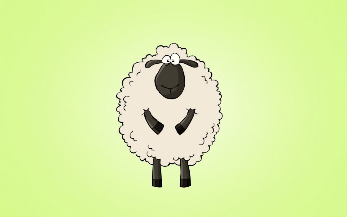 sheep artwork wallpaper