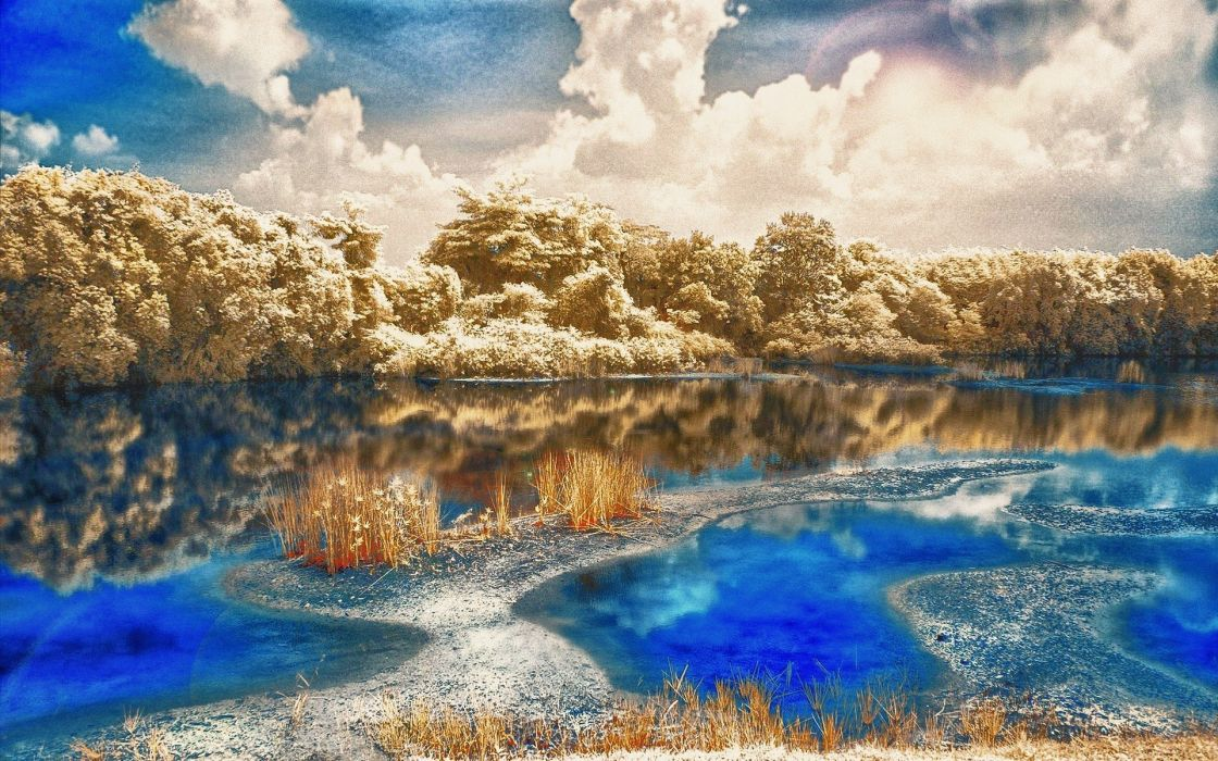 water trees skyscapes wallpaper