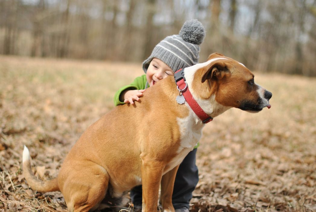 baby boy dog friend humor joy hugs mood wallpaper