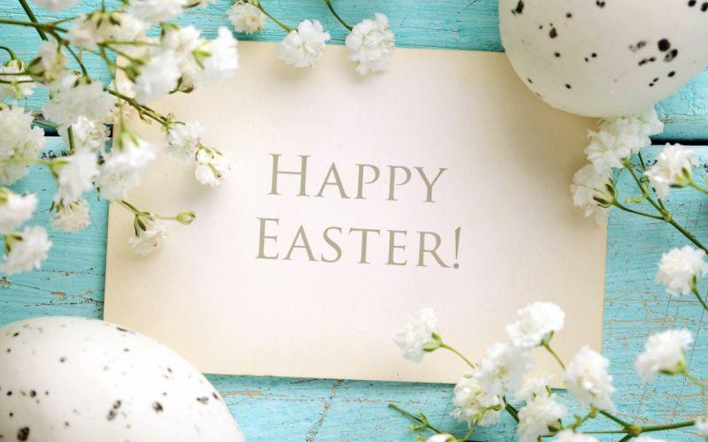 blue easter happy delicate flowers pastel eggs spring wallpaper