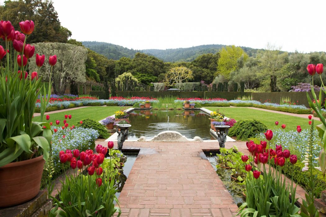 Filoli Landscape Pond Garden Tulips Usa Wallpaper 3072x2048