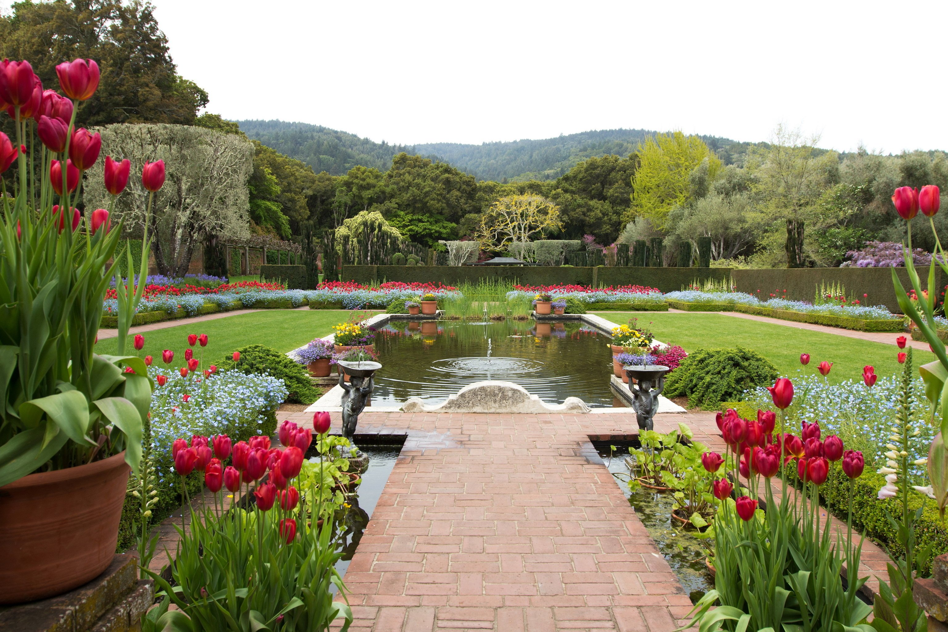 Filoli landscape pond garden tulips usa wallpaper for Filoli garden pool