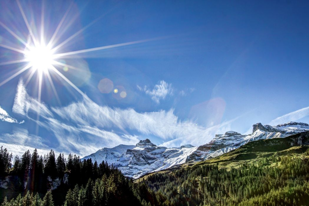 forest mountains nature sun rays wallpaper