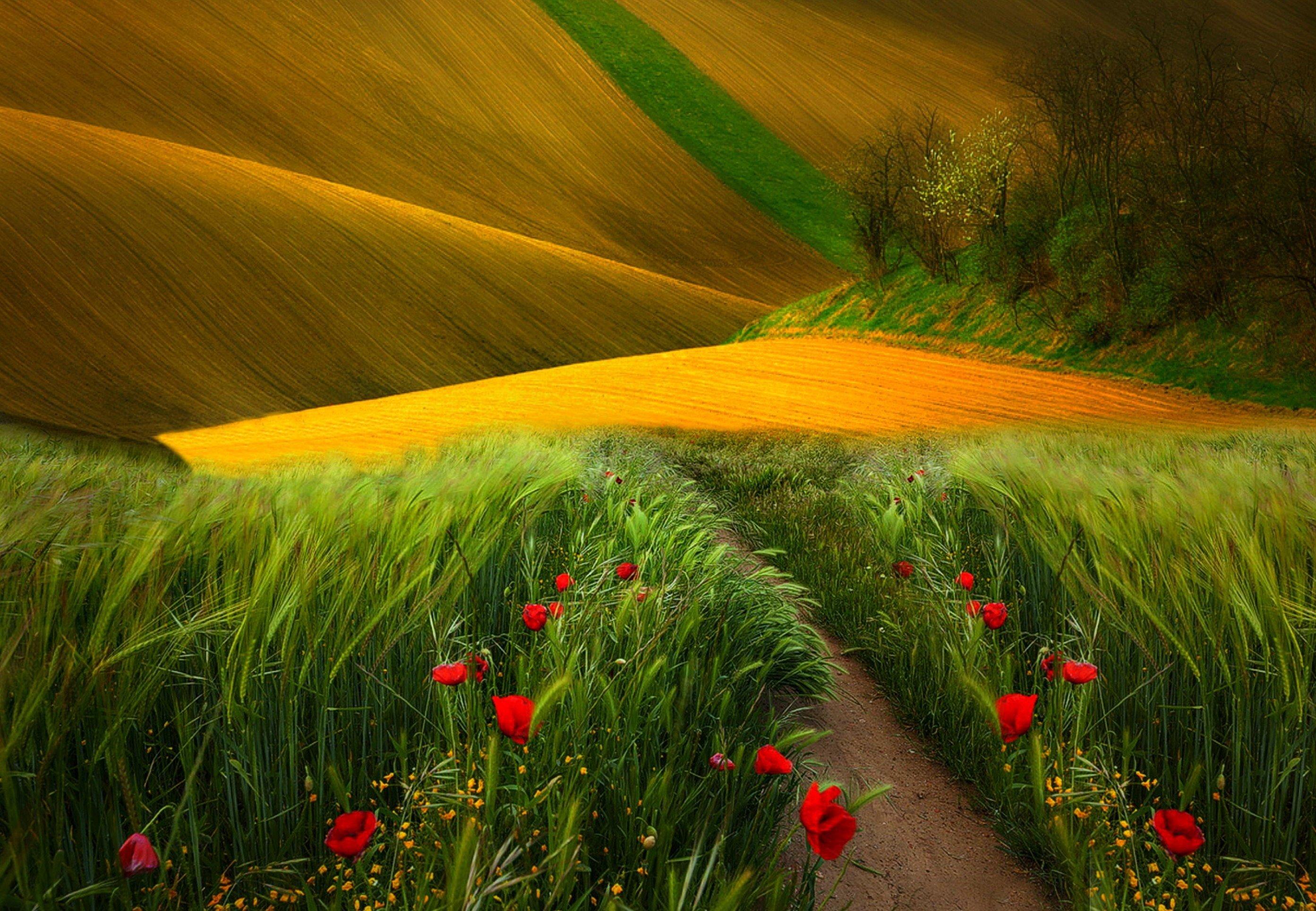 National Geographic Spring Landscapes nature landscape Heaven