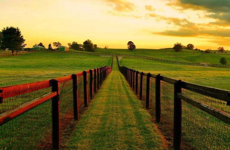 landscape nature sunset field grass Ontario Canada wallpaper