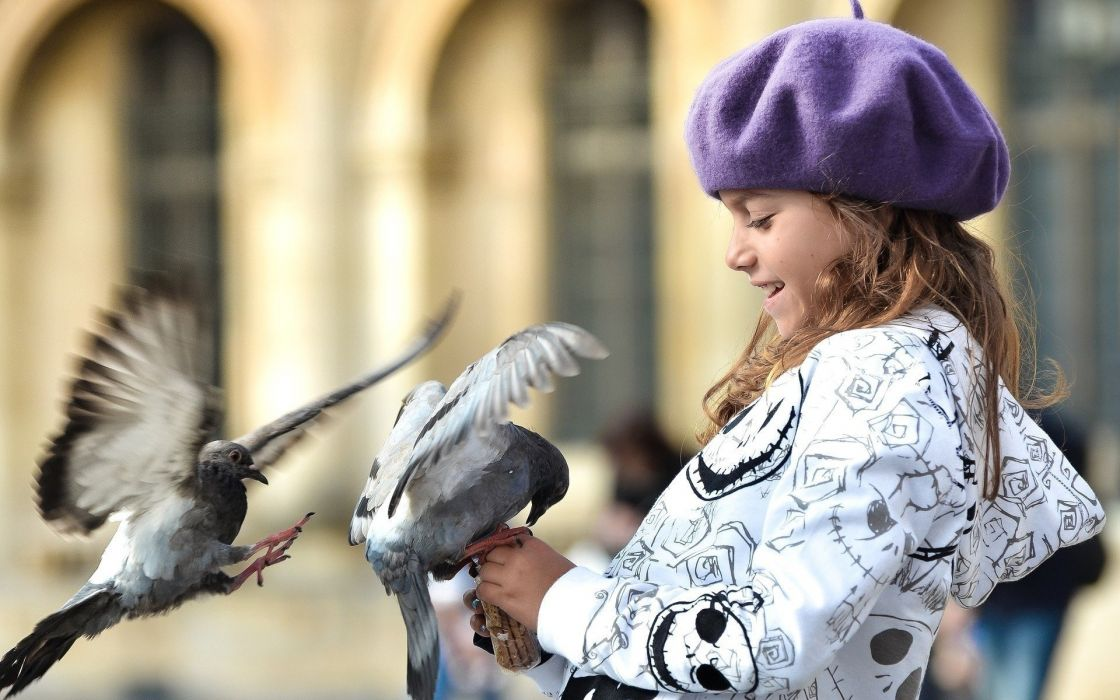mood children girl bird birds pigeon pigeons hat smile blur walk wallpaper
