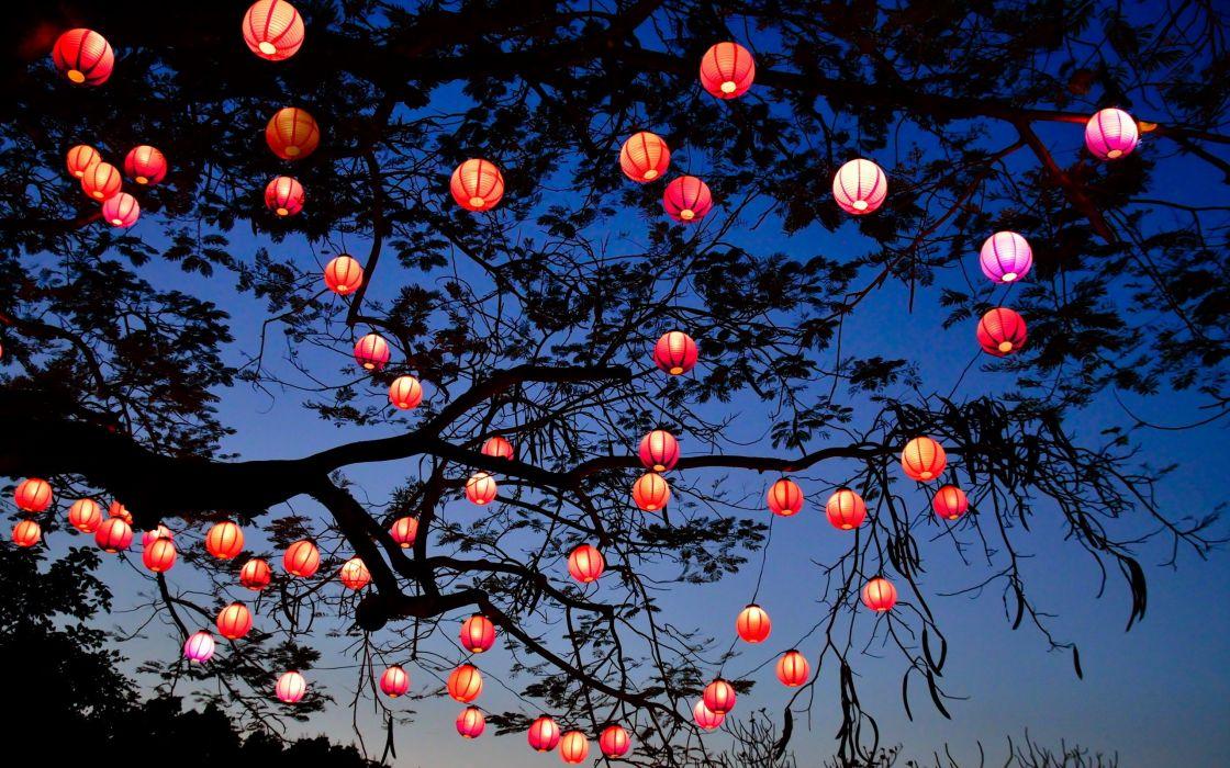 night lights tree lantern lamp bokeh wallpaper