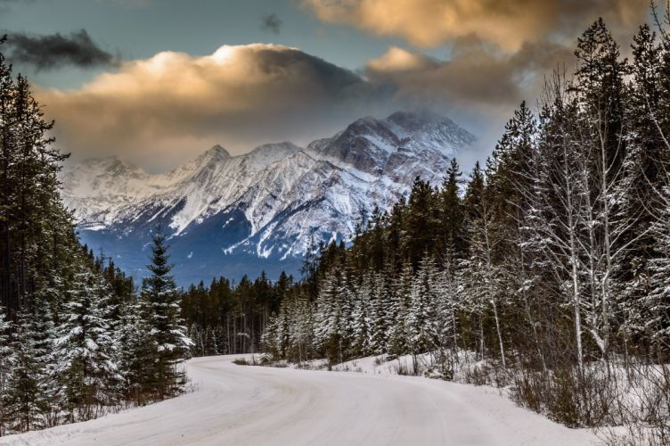 snow winter forest mountains road wallpaper
