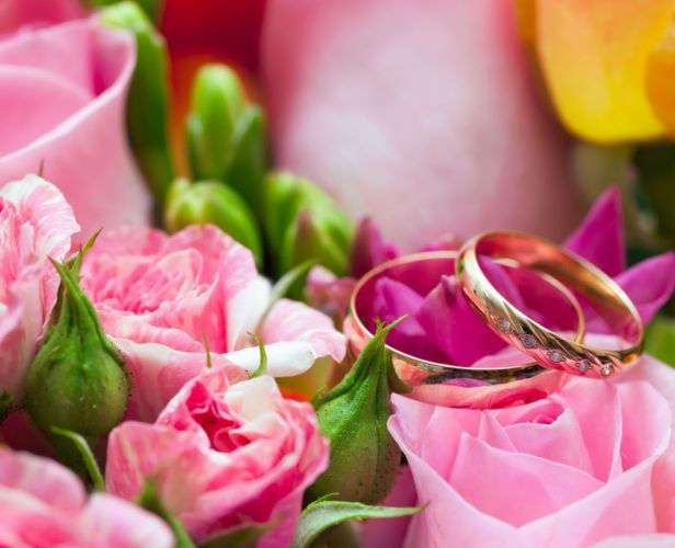 Closeup Roses Gold Jewelry Ring Flowers wedding love mood wallpaper
