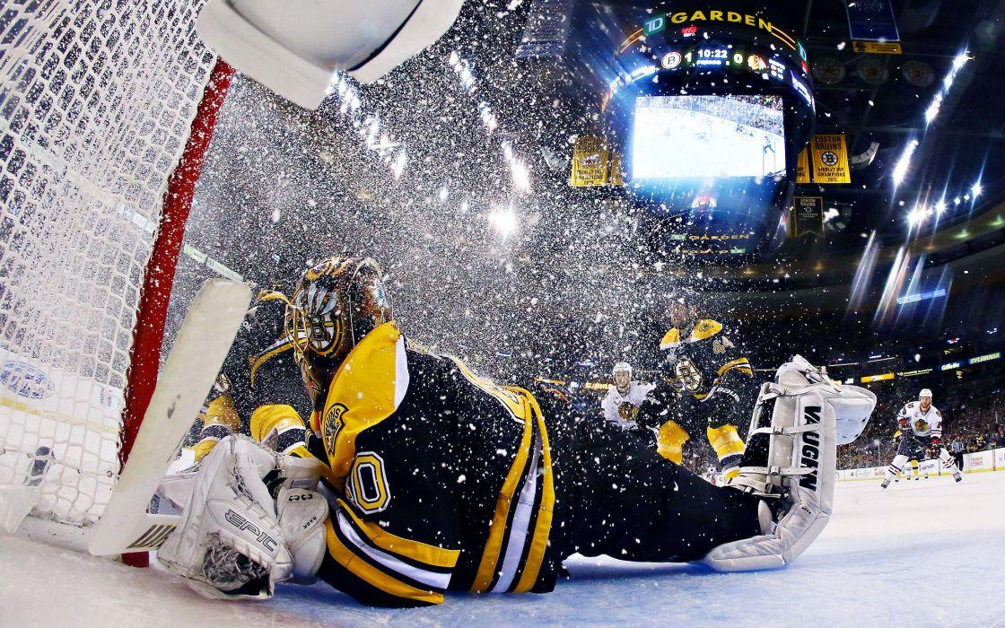 BOSTON BRUINS nhl hockey (27) wallpaper
