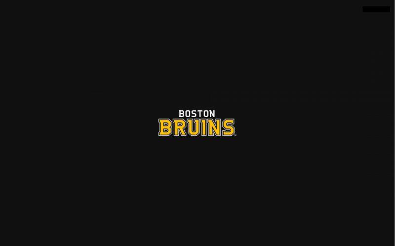 BOSTON BRUINS nhl hockey (1) wallpaper
