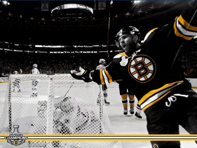 BOSTON BRUINS nhl hockey (41) wallpaper