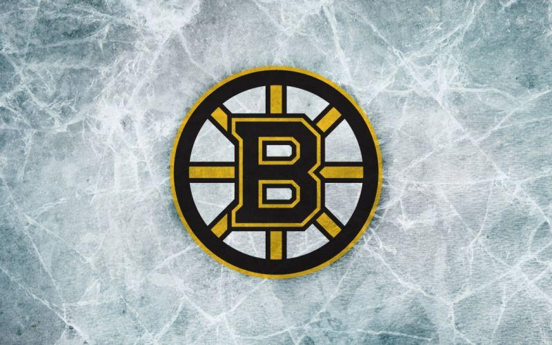 BOSTON BRUINS nhl hockey (39) wallpaper